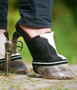 gun and hoof shoe