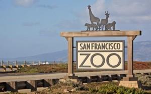 san-francisco-zoo-sign-21-540x335
